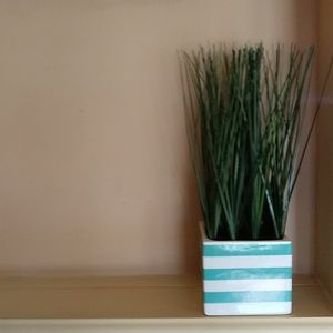 Other - Accent plant home decor turquoise and white stripe